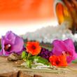 Globulis mit Blüten und Holzuntergrund