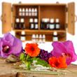 Globulis mit Blüten und Arzneischrank