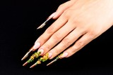 Stiletto handnails with sunflowers