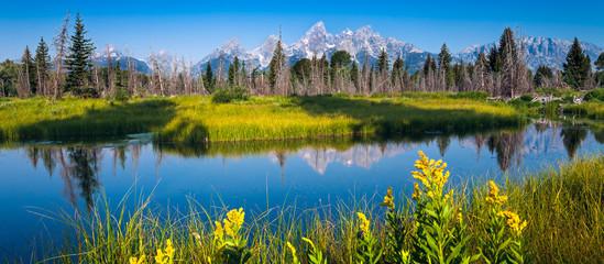 Parco naturale Grand Teton dallo Snake river