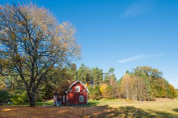 Herbst in Småland, Schweden