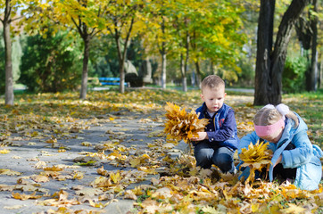 Youngsters collecting autumn leaves