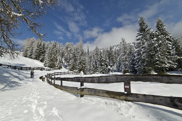 Winter Hiking trail, after a Snowfall