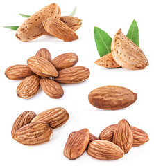 Collections of almonds isolated on white background
