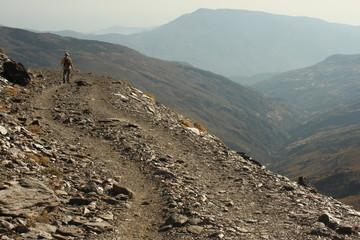 rambler on a winding footpath in Sierra Nevada, Spain