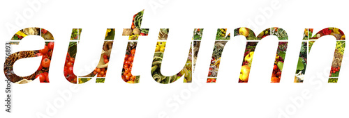 autumn lettering made of vegetable compositions