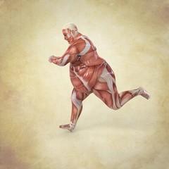 Anatomia Hombre Corriendo