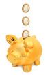 Piggy bank and euro coins.