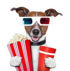 3d glasses movie popcorn dog
