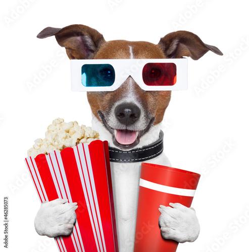 3d glasses movie popcorn dog