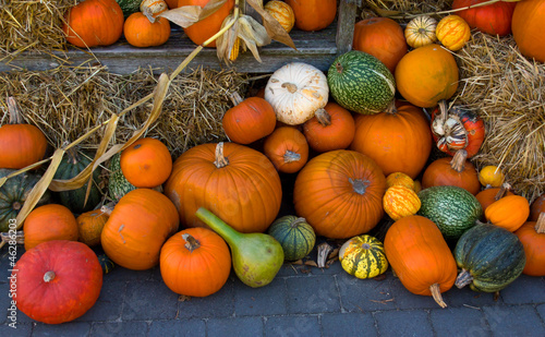 Pumpkins as fall decoration