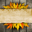 leaves and old paper on wooden background