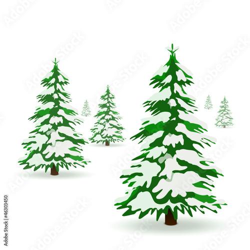 Weihnachtsbäume, Tannenbäume, Wald, Schnee, zugeschneit, bedeckt