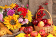 Colorful autumn still life with apples