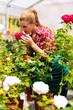 Gärtnerin in ihrer Gärtnerei