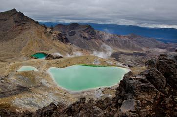 tongariri national park, new zealand