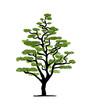 Art tree design
