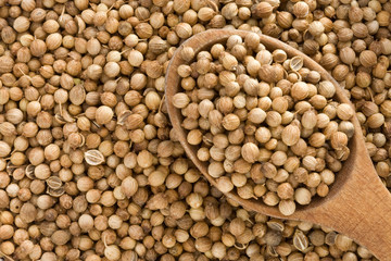 Coriander spices and spoon
