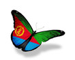 Eritrea flag butterfly flying, isolated on white background
