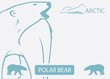 Polar bear background - vector illustration