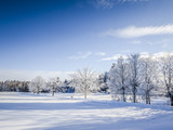 Fototapety winter scenery