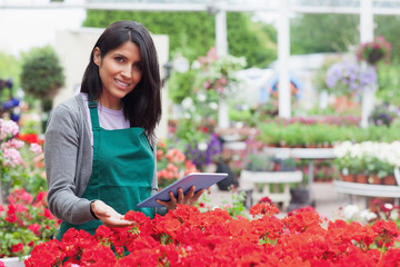 Employee choosing flowers with tablet pc in garden center