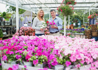 Couple choosing plants in the garden centre