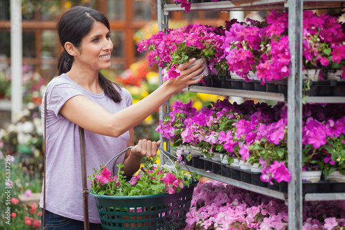 Woman looking at purple and pink plants