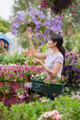 Woman shopping for flowers in garden center