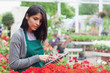 Employee checking flowers with tablet pc in garden center