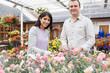 Happy couple choosing plants