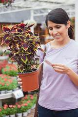 Woman looking for the price of plant