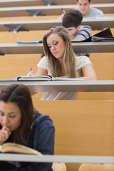 Students sitting at the lecture hall writing