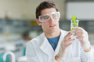 Student standing at the laboratory looking at the beaker