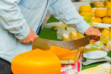 Male hands cutting dutch cheese