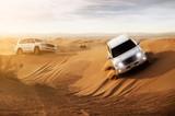 Desert Safari - 46343686