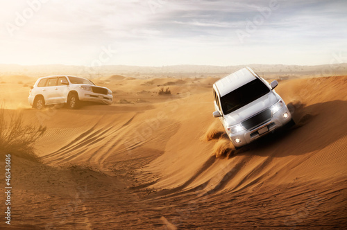 canvas print picture Desert Safari