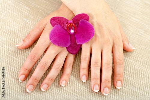 Fototapeten,hand,makro,manicure,massage