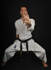 Posiciones de karate. Kiba dachi