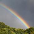 canvas print picture - Regenbogen