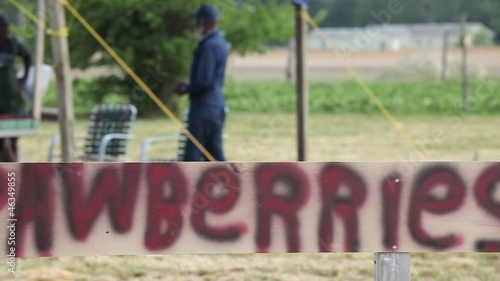 Hand painted 'Strawberries' sign in front of fruit stand in field