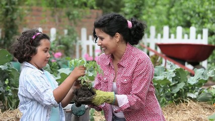 Mother and daughter planting and watering tomatoes in vegetable garden