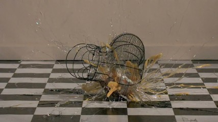 A basket of eggs falling and breaks (slow motion)