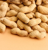 tasty peanuts, on beige background