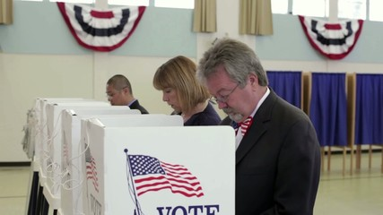 People voting at voting booths