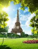 Fototapety Eiffel tower in Paris, France
