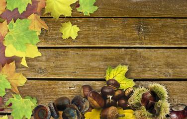 Pinnwand Herbstfruechte