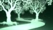 樹木の道ループ
