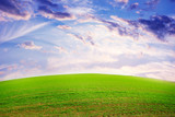 beautiful green herb on the field and celestial landscape poster