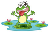 a frog and a water